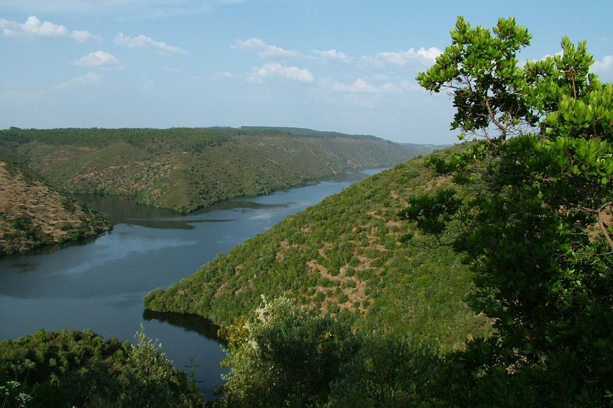 ZEPA Río Tajo Internacional